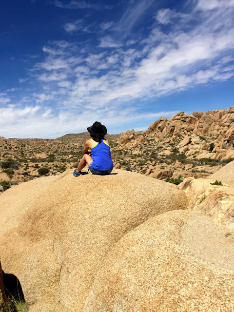 Joshua Tree National Park View from the Top
