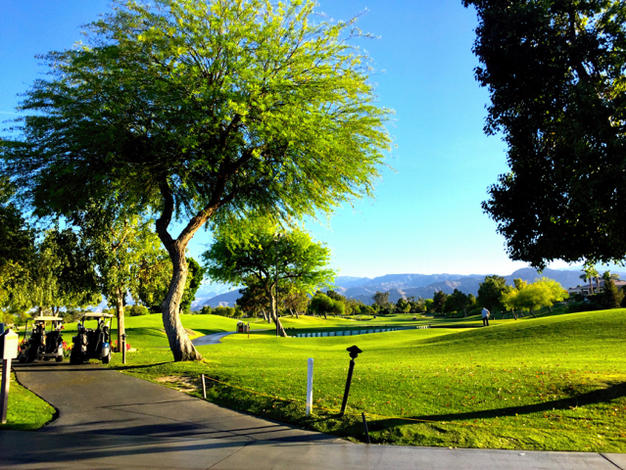 Westin Mission Hills Rancho Mirage Pete Dye Golf Course