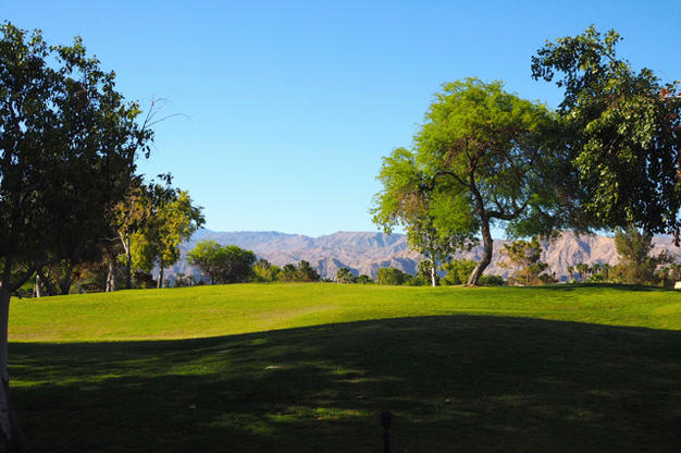 Westin Mission Hills Rancho Mirage View from Room